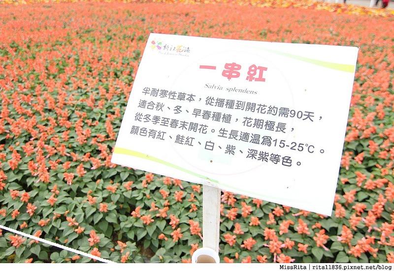 2014新社花海17