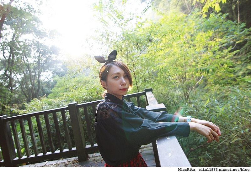 清境觀光巴士 奧萬大森林遊樂區 賞楓54-