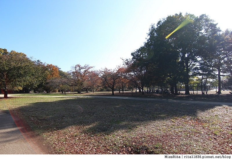 東京 好玩景點 三鶯之森吉力卜宮崎駿美術館 井之頭恩賜公園42