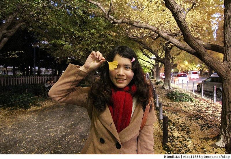 日本東京 賞銀杏 明治神宮外苑 銀杏 神宮外苑銀杏季 いちょう祭り37