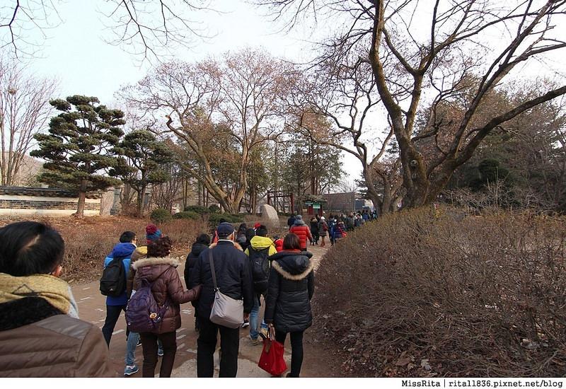韓國 旅遊 韓國好玩 韓國 南怡島 韓劇景點 冬季戀歌場景 南怡島11