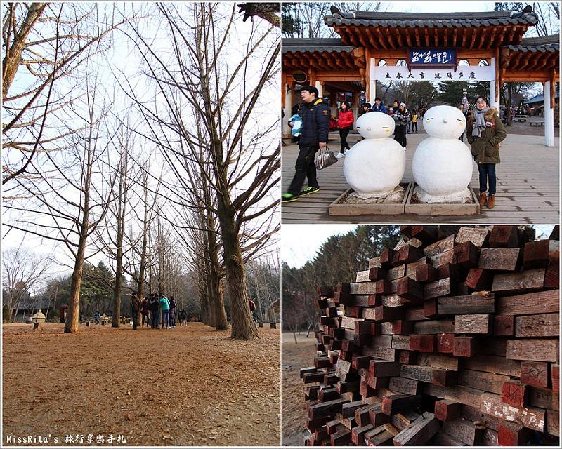 韓國 旅遊 韓國好玩 韓國 南怡島 韓劇景點 冬季戀歌場景 南怡島0