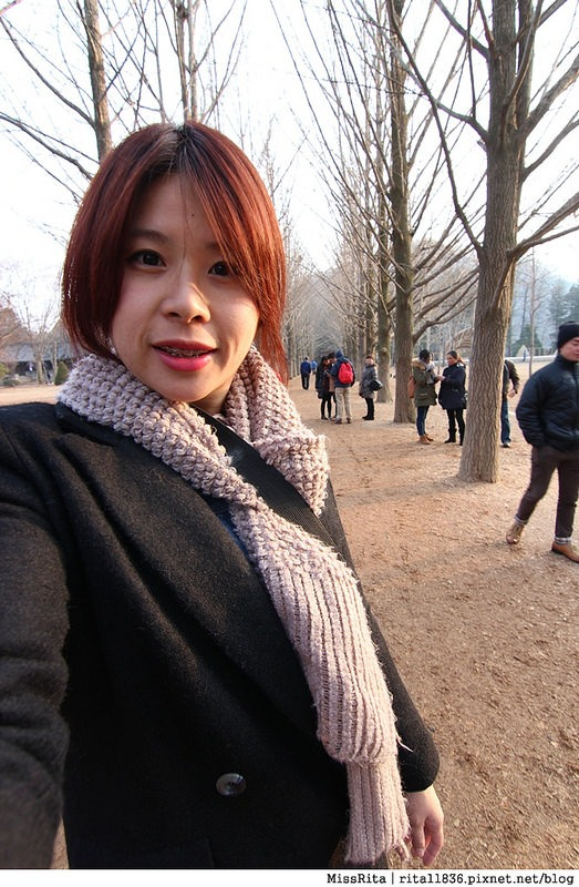 韓國 旅遊 韓國好玩 韓國 南怡島 韓劇景點 冬季戀歌場景 南怡島22