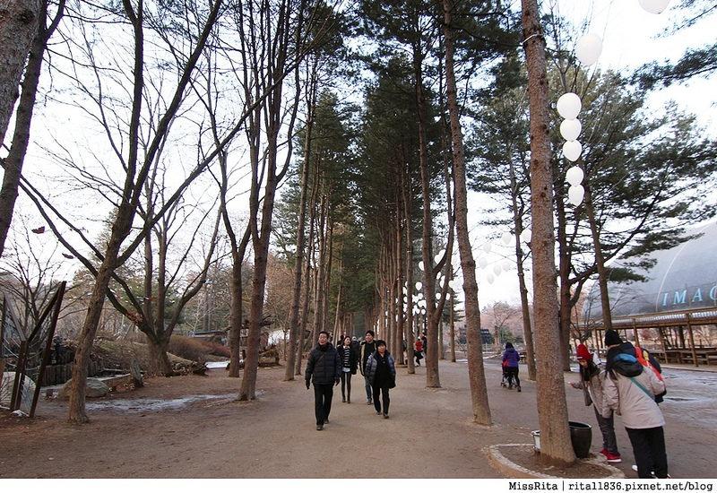 韓國 旅遊 韓國好玩 韓國 南怡島 韓劇景點 冬季戀歌場景 南怡島35