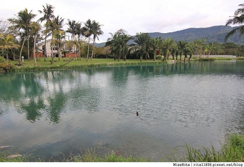 花蓮景點 花蓮雲山水 雲山水夢幻湖 雲山水自然生態農場 花蓮壽豐 花蓮外拍景點 有熊的森林6
