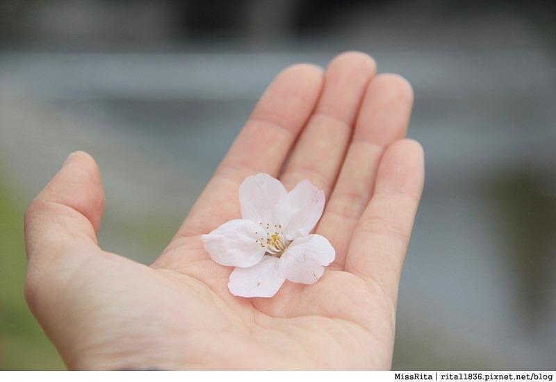 日本上網 大阪上網 wifi上網 日本wifi 桔豐wifi上網 jetfi wifi分享機 日本自由行 日本自助 關西自助 京阪自助13