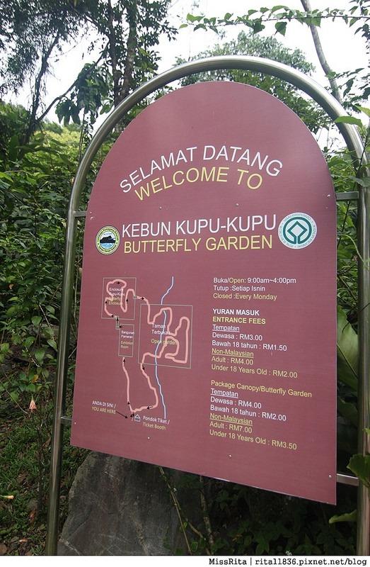 馬來西亞自由行 馬來西亞 沙巴 沙巴自由行 沙巴神山 神山公園 KinabaluPark Nabalu PORINGHOTSPRINGS 亞庇 波令溫泉 klook 客路 客路沙巴 客路自由行 客路沙巴行程69