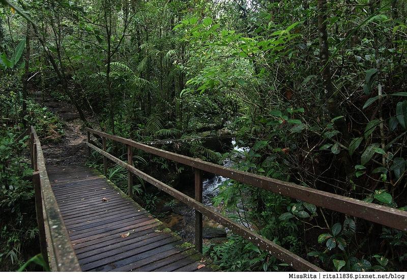 馬來西亞自由行 馬來西亞 沙巴 沙巴自由行 沙巴神山 神山公園 KinabaluPark Nabalu PORINGHOTSPRINGS 亞庇 波令溫泉 klook 客路 客路沙巴 客路自由行 客路沙巴行程13