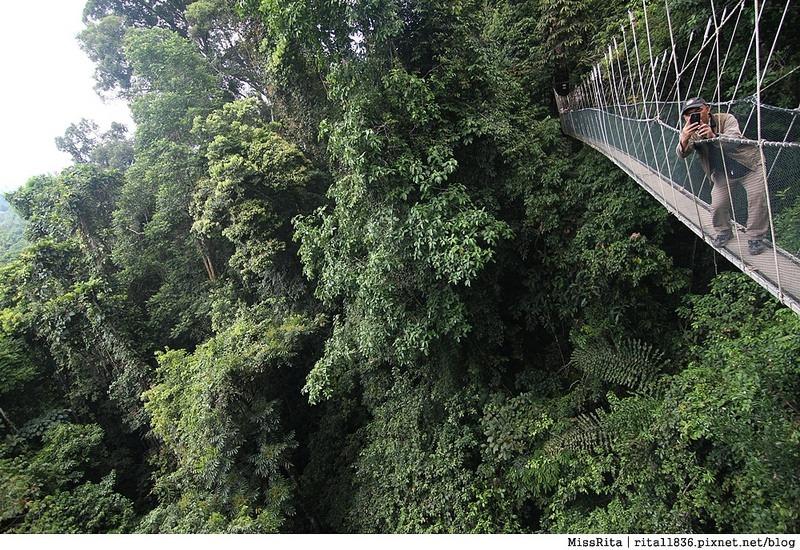 馬來西亞自由行 馬來西亞 沙巴 沙巴自由行 沙巴神山 神山公園 KinabaluPark Nabalu PORINGHOTSPRINGS 亞庇 波令溫泉 klook 客路 客路沙巴 客路自由行 客路沙巴行程67