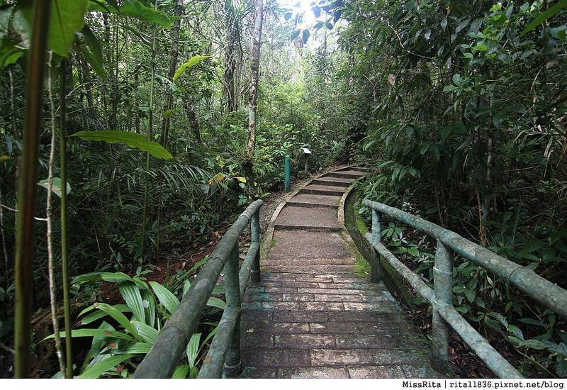 馬來西亞自由行 馬來西亞 沙巴 沙巴自由行 沙巴神山 神山公園 KinabaluPark Nabalu PORINGHOTSPRINGS 亞庇 波令溫泉 klook 客路 客路沙巴 客路自由行 客路沙巴行程16